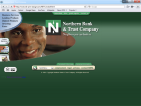 Example of Banks and Financial Bank Web Site Designers