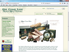 Example of Retail Clothing and Accessories Best Web Design