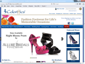 Example of Retail Clothing and Accessories Web Site Design