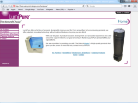 Example of Manufacturing Distribution Internet Promotion