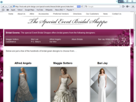 Example of Retail Clothing and Accessories search engine marketing