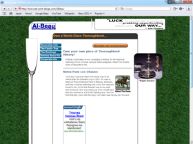 Example of Retail Sports and Health Search Engine Optimization