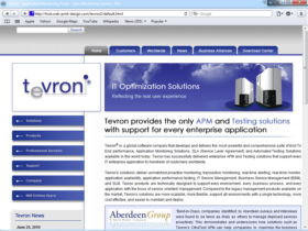 Example of Software and TeleCom Internetworking and Related Real Estate Web Design